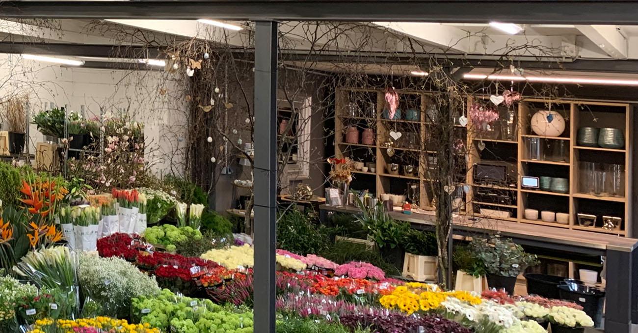 BlumenMarkt René de Clercq / Pflanzen- und Blumenmarkt & Märkte